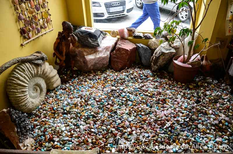 escaparate de tienda con gran amonitex y una especie de piscina llena de piedras semipreciosas de namibia