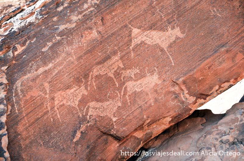 animales grabados en la roca