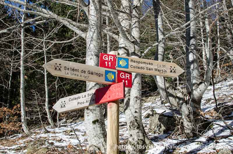 carteles de madera señalando distintas rutas