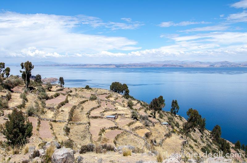 paisaje de la isla con campos de cultivo delimitados por vallas de piedra y el lago titicaca al lado