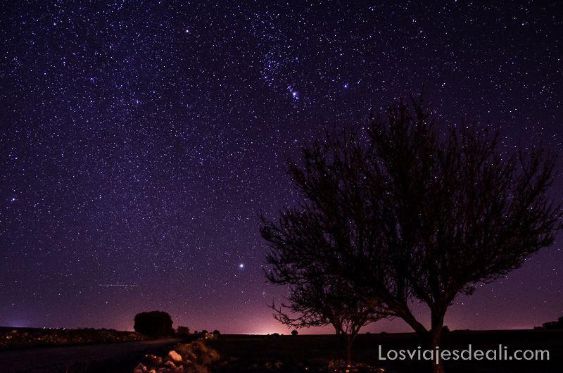 paisaje nocturno y el cosmos