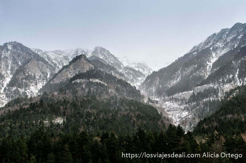 montañas con pinos abajo y restos de nieve arriba