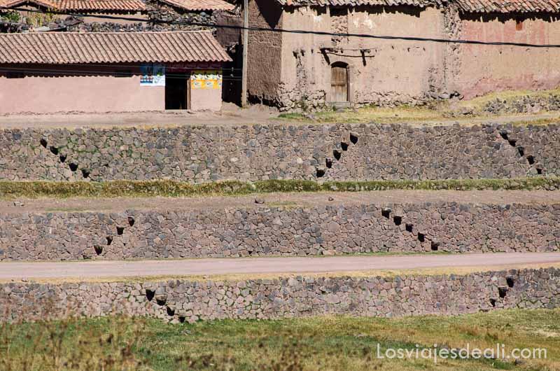 bancales incas para cultivo