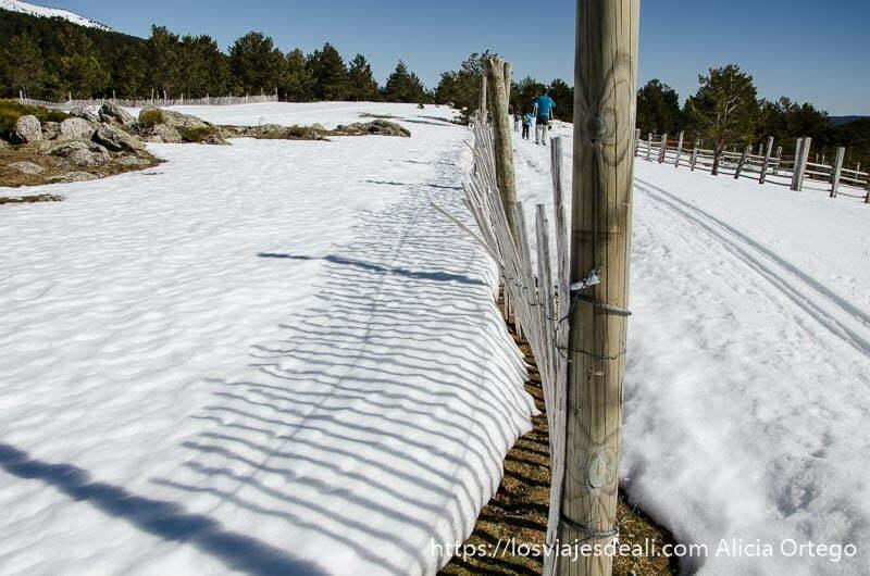 valla que separa pistas de esquí de fondo en navacerrada
