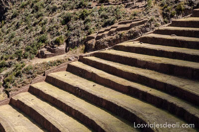 terrazas de cultivos incas en ladera de montaña con mucha pendiente