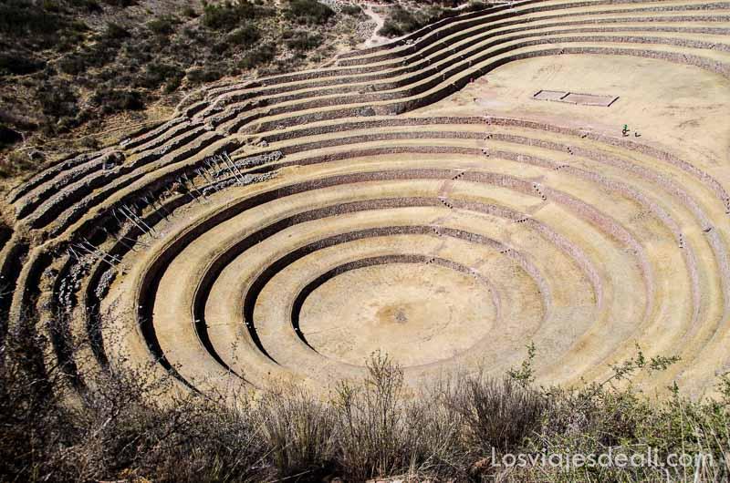 terrazas en forma de círculos perfectos vistas desde arriba en el valle sagrado de los incas