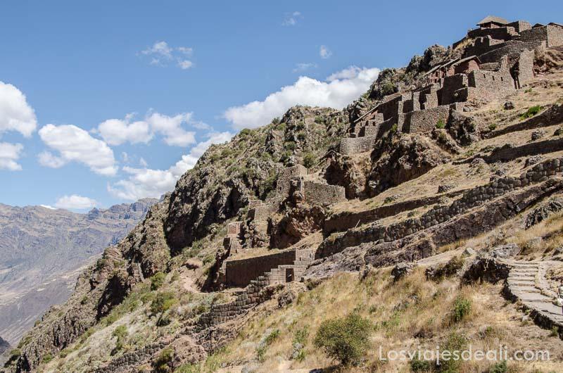 fortaleza de piedra en lo alto de montaña junto a terrazas incas