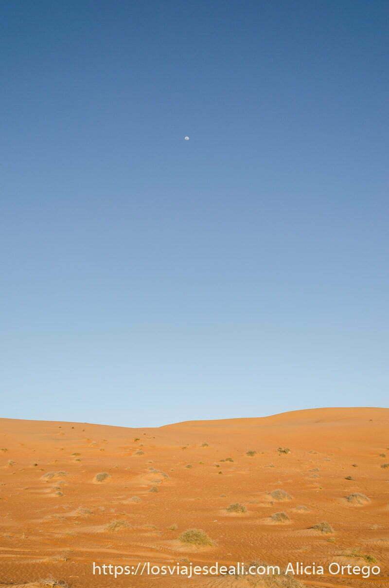 foto vertical dunas rojas y cielo azul oscuro con luna creciente en lo alto