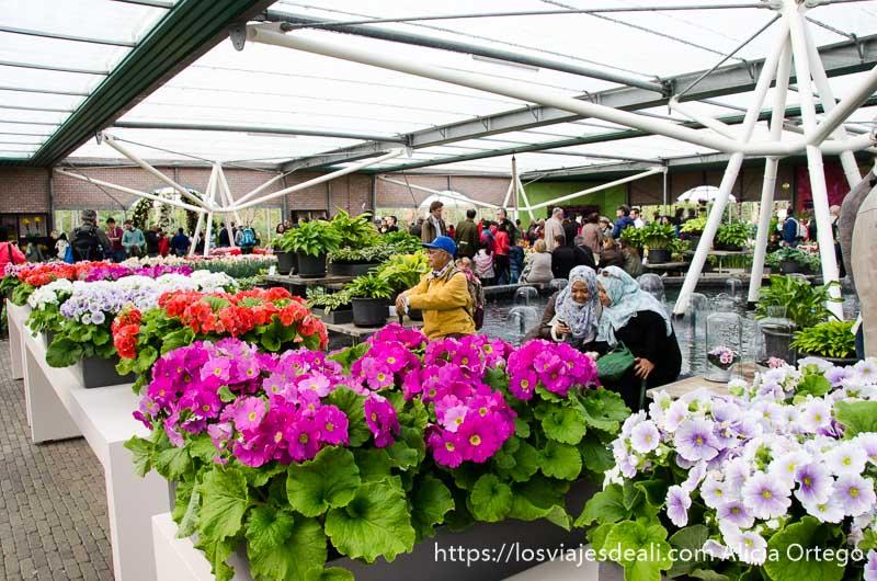 invernadero con turistas indonesios entre las flores