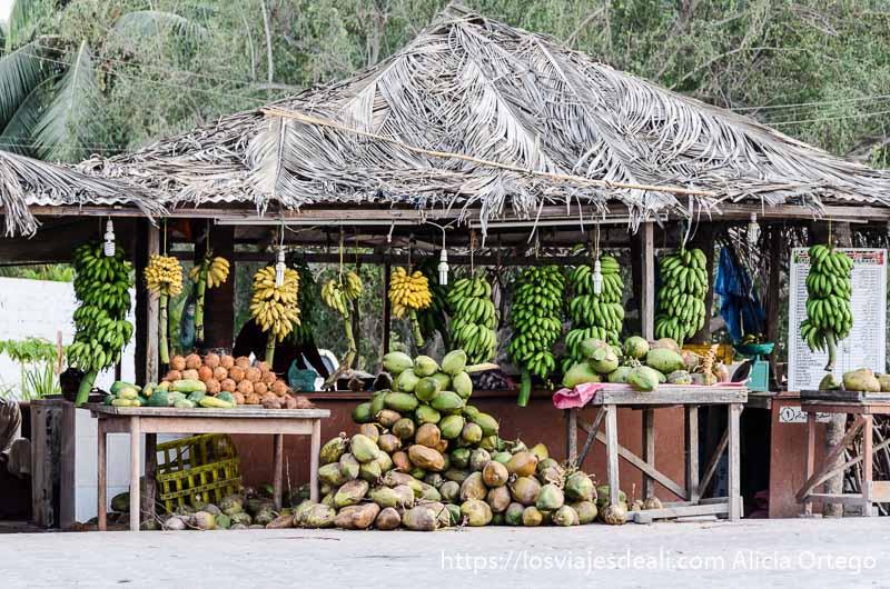 puesto de cocos verdes y bananas en las calles de salalah