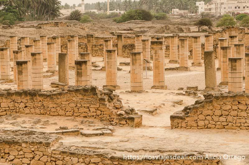 extensión llena de columnas de antiguo palacio de dhofar