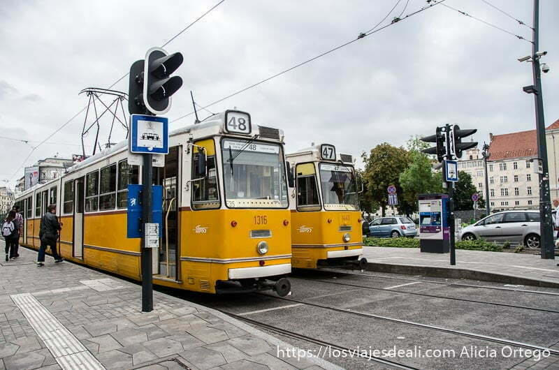 tranvías amarillos parados en las calles de budapest
