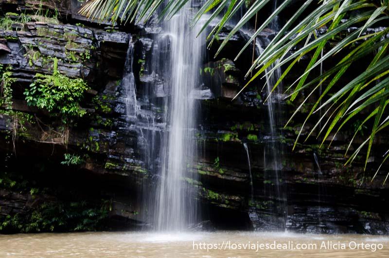 cascada cayendo con hojas de palmera delante en benin