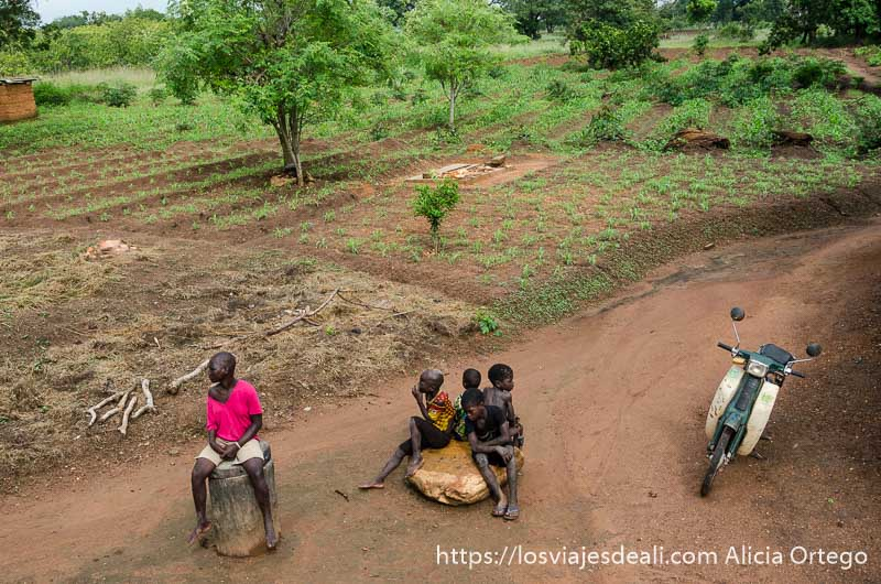 campos de cultivo de los somba tribus de benin