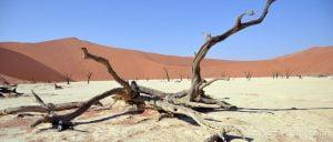 deadvlei en el desierto del namib