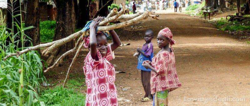 carreteras norte camerun
