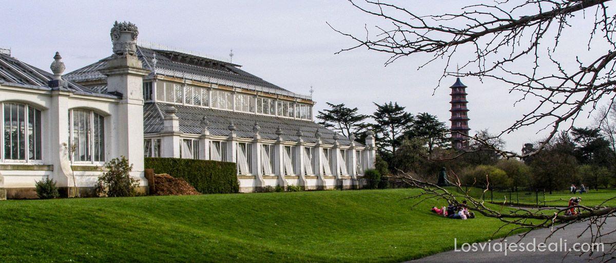 jardin botánico de londres