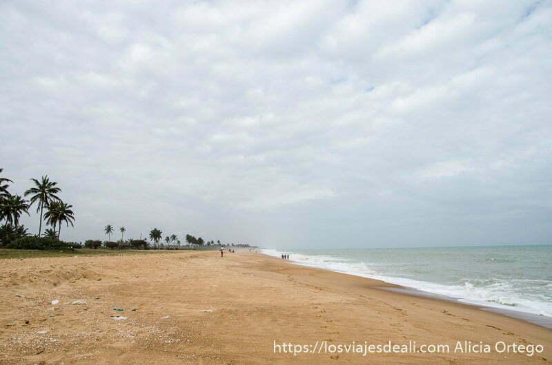 gran playa desierta con cielo nublado y palmeras a un lado en ouidah benin