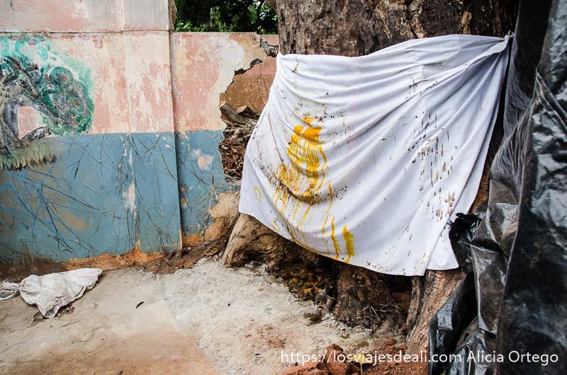 altar vudú consistente en tela blanca sobre tronco de árbol con una sustancia amarilla en el centro en ouidah benin