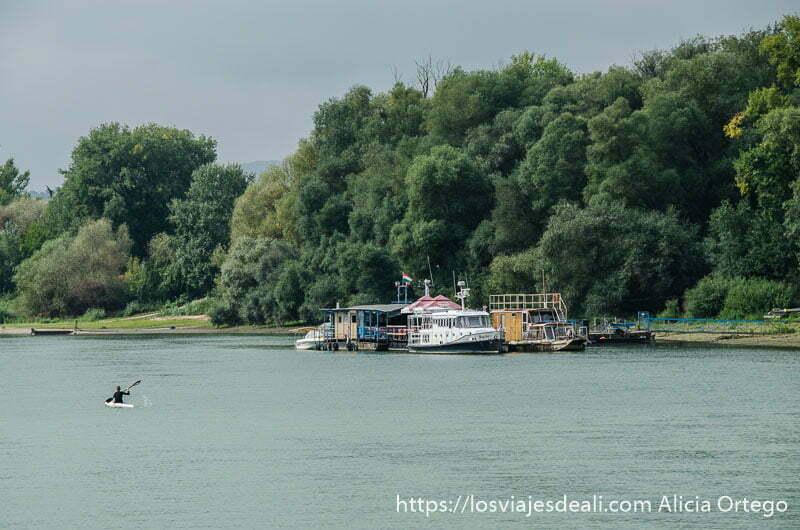 barcos atracados en la orilla de una isla del danubio con muchos árboles y piragüista pasando al lado