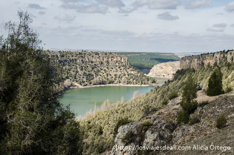 ladera de monte con pequeños árboles y río al fondo en las hoces del duratón
