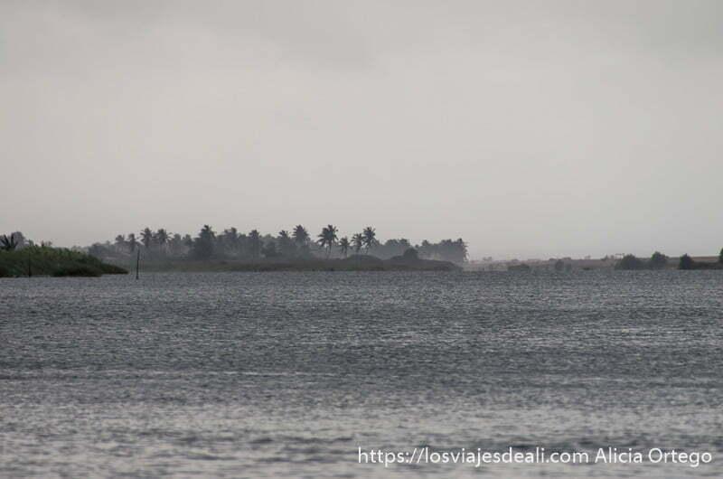 río muy ancho con fila de palmeras al fondo lloviendo mucho junto a las playas de benin