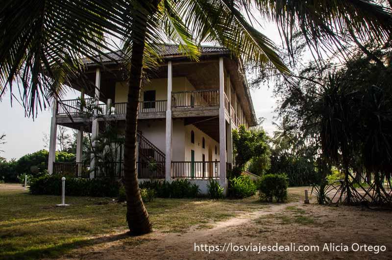 edificio colonial de dos pisos hotel aubergue  con una gran palmera delante en benin