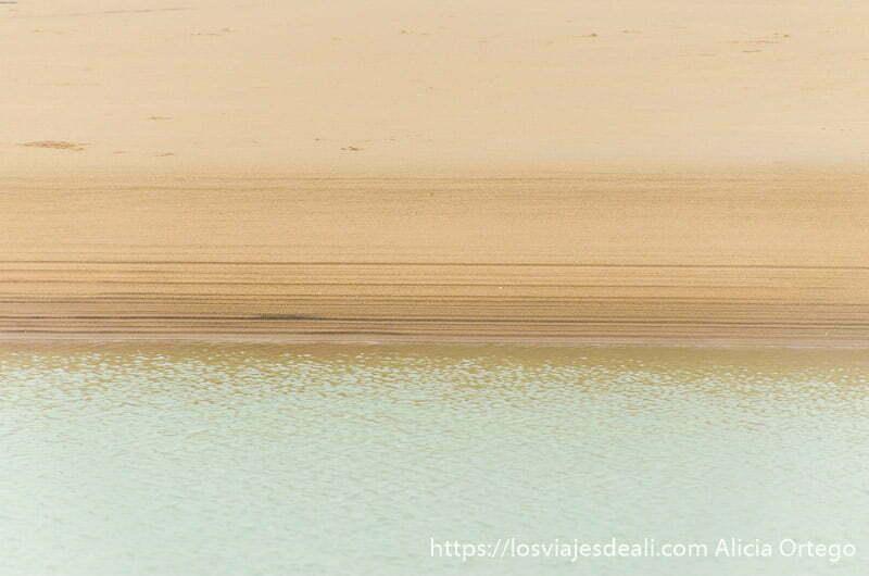 arena y agua de tono verde en playas de benin