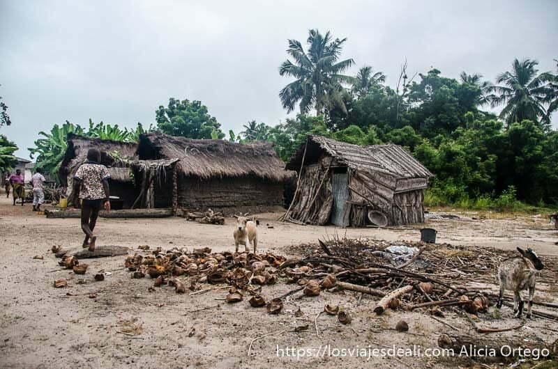 poblado de casas humildes con cabras y niños por calles de arena junto a playas de benin