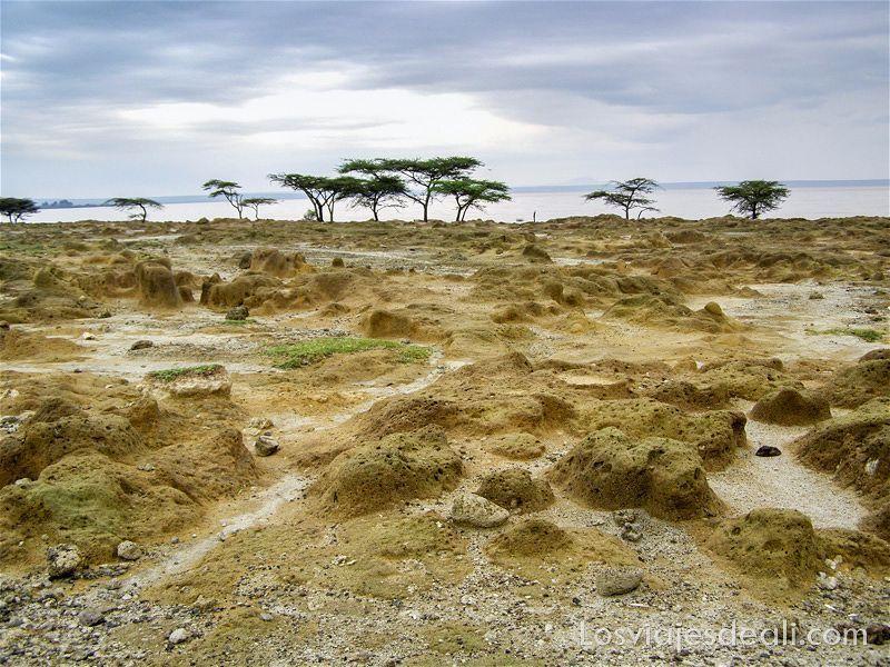 paisaje del lago Langano uno de los lagos de Etiopía