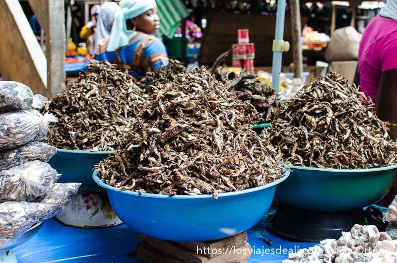 barreños de pescado ahumado a la venta en el mercado de sokodé en togo