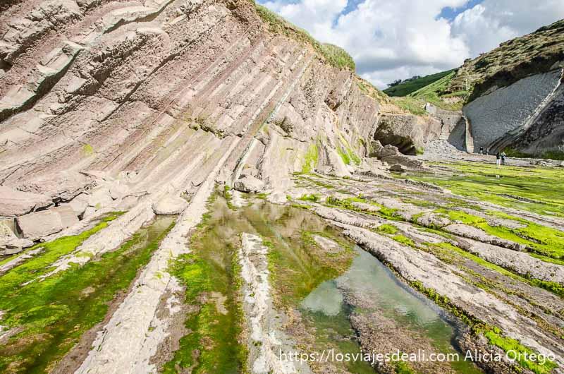 costa de rocas plegadas por movimientos tectónicos como si fuera un acordeón en flysch de zumaia