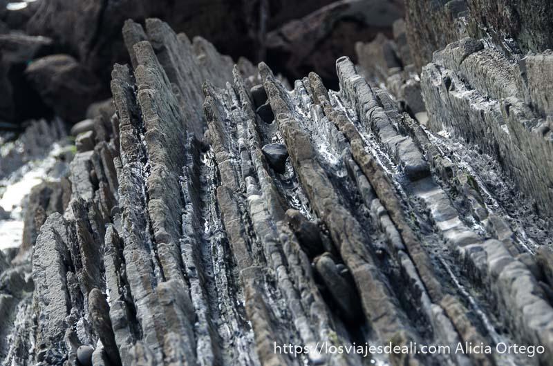 capas de roca con guijarros entre medias en la playa de zumaia