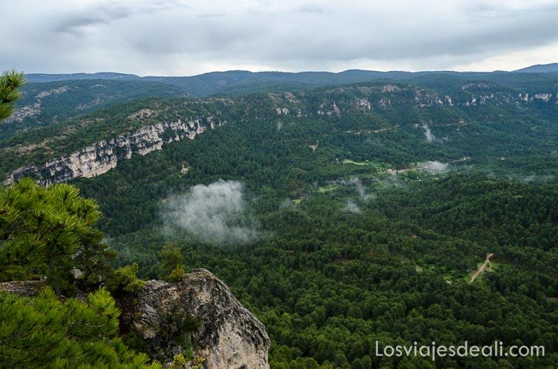 paisaje de la serranía de cuenca con mucho bosque y cielo nublado