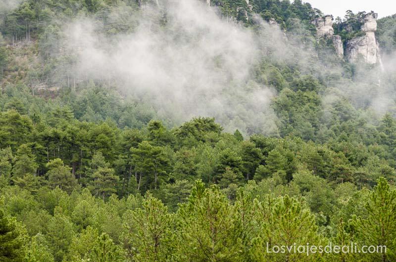 bosque con nieblas levantándose qué ver en la provincia de cuenca