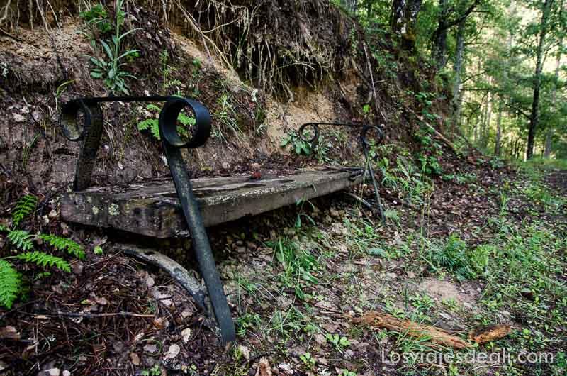 banco viejo en el bosque qué ver en la provincia de cuenca