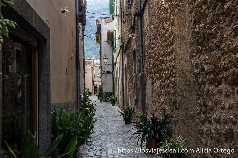calle estrecha de Sóller con plantas ruta por los pueblos de la tramontana