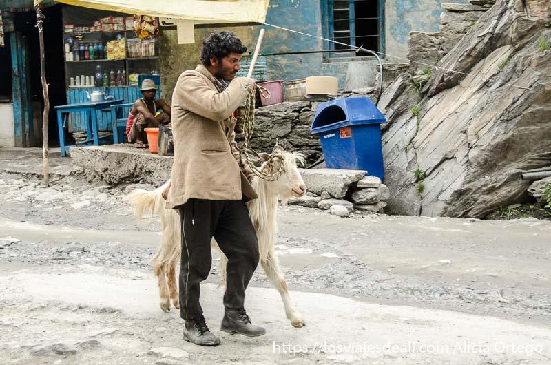 un hombre llevando una cabra de lana blanca carreteras del himalaya