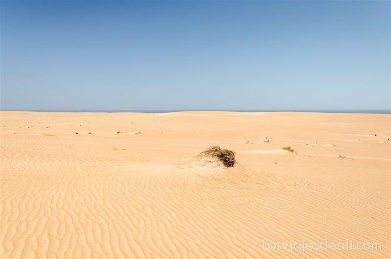 desierto de Omán con mar al fondo las texturas de los viajes