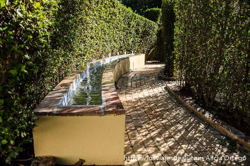 fuente con muchos chorritos siguiendo curva del paseo entre setos en el jardin botánico de torremolinos