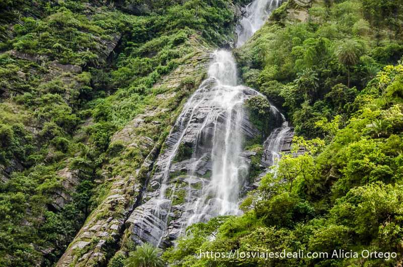 cascada en ladera de montaña llena de vegetación verde que ver en manali