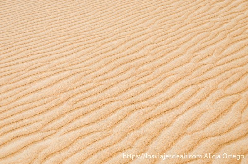 dibujo de líneas onduladas que deja el viento en la arena desiertos de oman