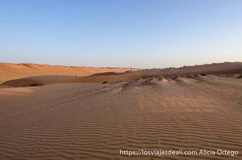 dunas y cielo azul en wahiba sands uno de los desiertos de oman
