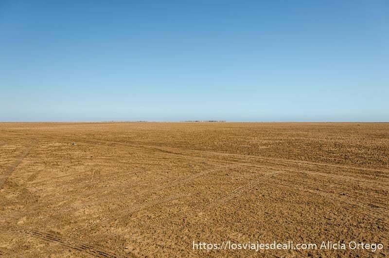paisaje plano con tierra de color marrón y cielo muy azul desiertos de omán