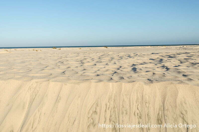 escalón de carena y dunas con el mar al fondo desiertos de oman