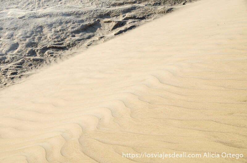 arena levantándose por el viento en una duna desiertos de omán