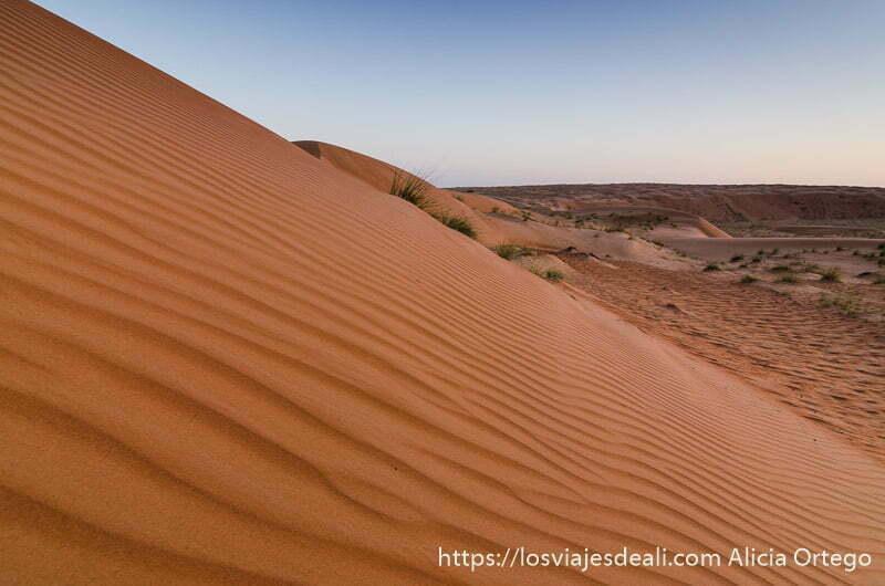 dunas de perfil con luz de atardecer desiertos de omán