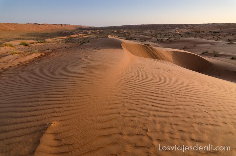 dunas con la luz del atardecer en wahiba desiertos de omán