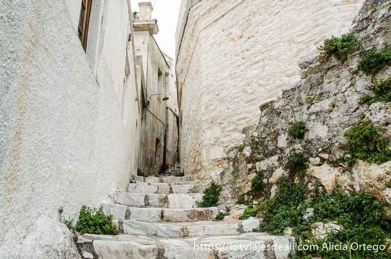calle desierta de pueblos del interior de naxos con casas encaladas y escaleras de piedra