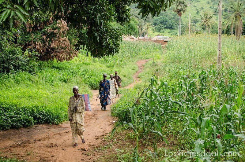 poblado taneka tribus de benin